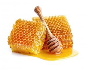 51259538 - honeycombs in closeup